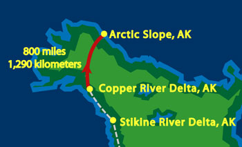Copper River to Arctic Slope